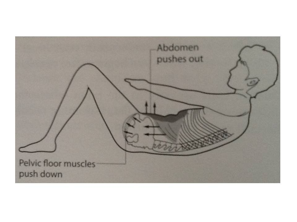 Efekt rolovania pri diastáze